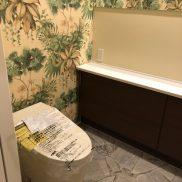 1Fのトイレは来客も使うことを想定した造りになっております(写真は新築当時の写真です)(内装)